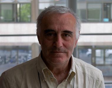 Domenico Innamorato